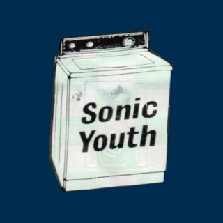 I Really Like Sonic Youth And I Really Want To Have Sex With You