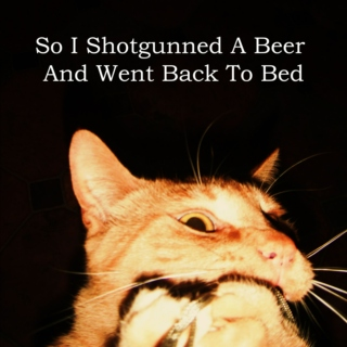So I Shotgunned A Beer And Went Back To Bed
