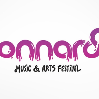 A Shitload of Bonnaroo Music