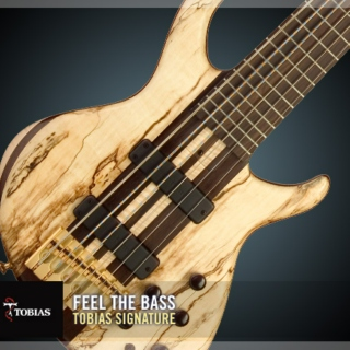 For the Bassists