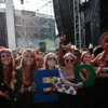 Best of Veld Music Festival Toronto