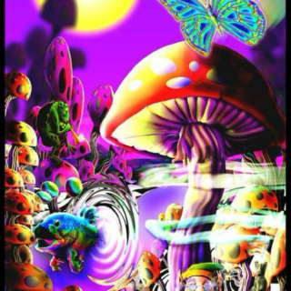 have you gone trippy trippy?
