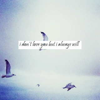 i dont love you but i always will