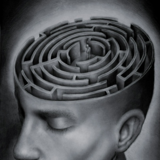 Exploring The Mind