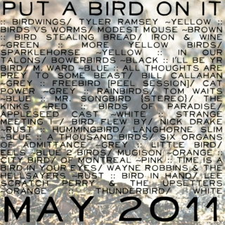put a bird on it ~ may 2011