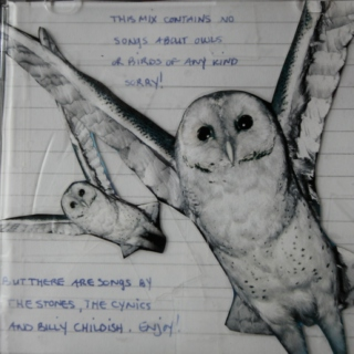 Music not composed for or by owls