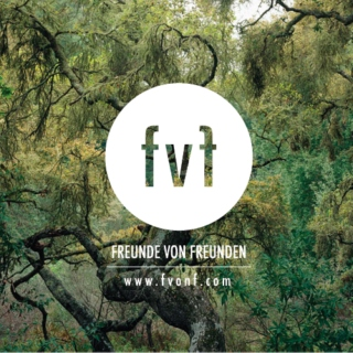 fvonf Mix February 2011