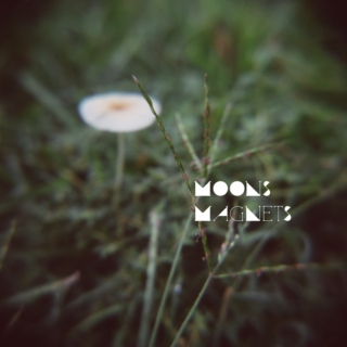 moons, magnets