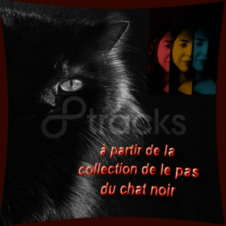 à partir de la collection de le pas du chat noir