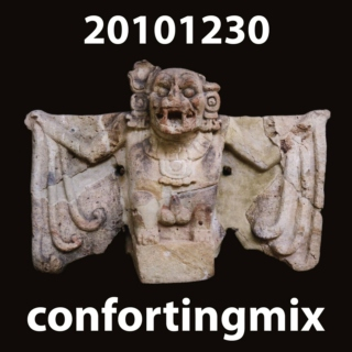 20101230_confortingmix