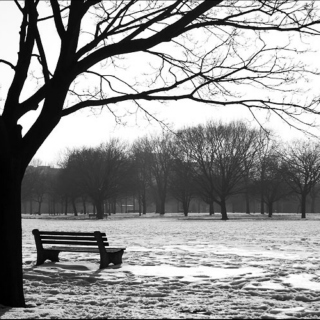 Songs to sit on a park bench to