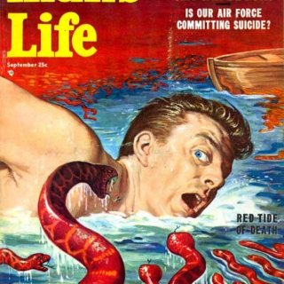 Man's Life: Red Tide of Death