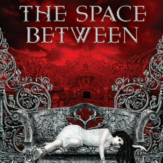 The Space Between (2011)