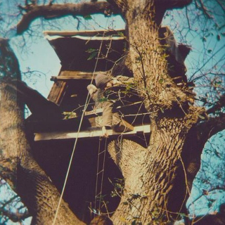 You + Me + This Treehouse
