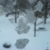 February 2011: Wintry Mix