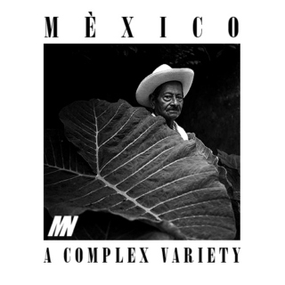 Mexico: A Complex Variety