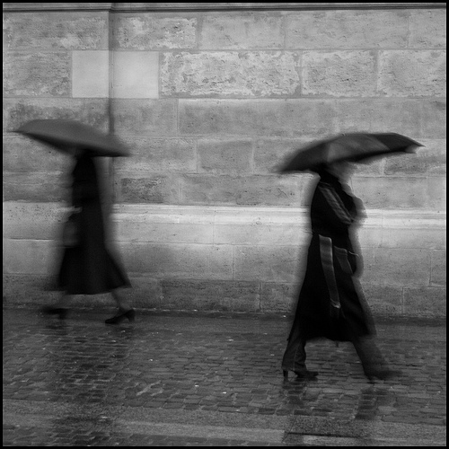 Songs for Raindrops