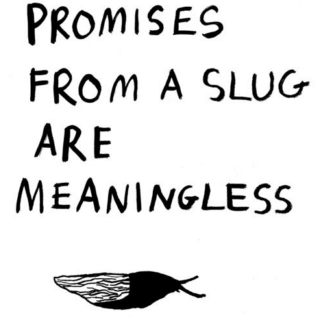 Promises from a slug are meaningless