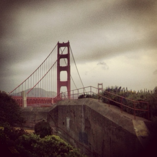 climbing up to the top of the golden gate