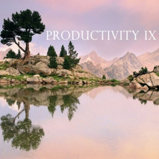 Productivity IX