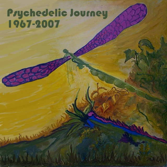 Psychedelic Journey from 1967 to 2007
