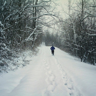 Winter Run Mix