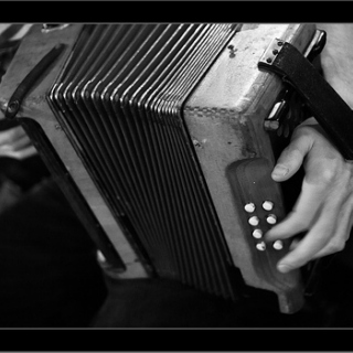 accordeon love
