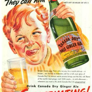 Whiskey and Ginger Ale