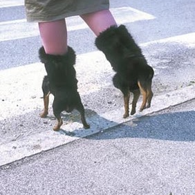 Like My New Boots?