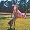 Friday Funday