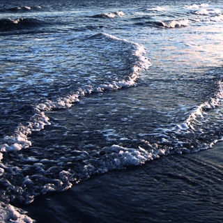 wordless waves