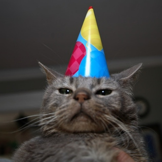 I CAN HAZ BIRTHDAY MIX?!