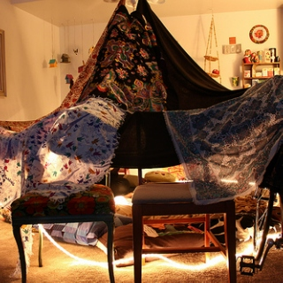 You Honestly Think I Can Study When I Could Potentially be Building a Fort?! Dammit, I'll do Both!