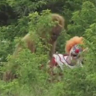 a sasquatch raping a space clown in a field: what could ever go wrong?!