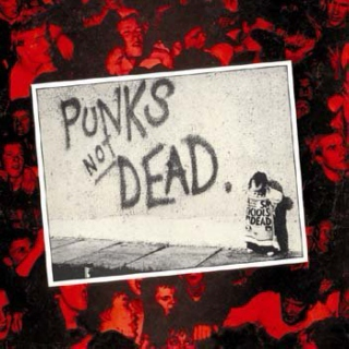 Punk/DIY:  15 tracks in 30 minutes