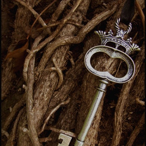 keys to the forest