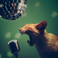 Sing Like You Mean It