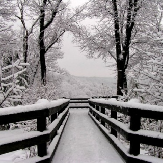 """""""As I sit and watch the snow falling down, I don't miss you at all"""""""