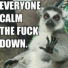 Listen To The Lemur