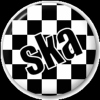 SKA PUNK! You aren't a true fan until you know every song by heart!
