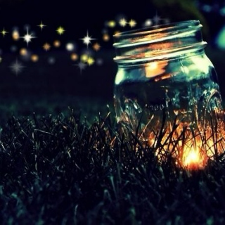 catching fireflies.