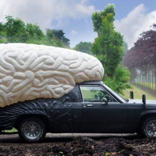 brain car wash