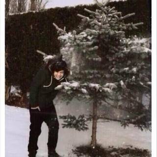 ❄Christmas with Harry❄