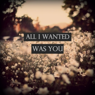 All I Wanted Was You
