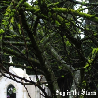 Boy in the Storm