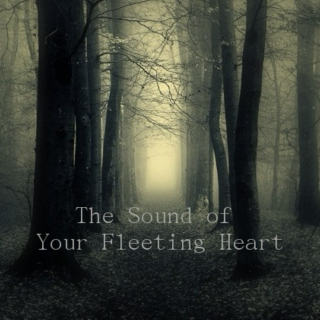 The Sound of Your Fleeting Heart
