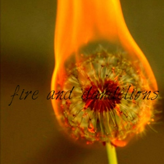 fire and dandelions