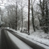 songs for a wintry day