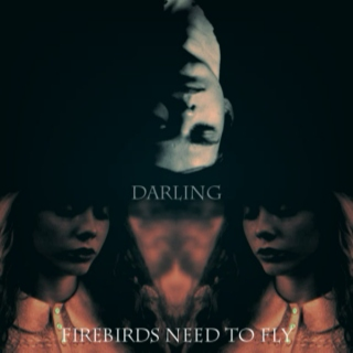 darling, firebirds need to fly