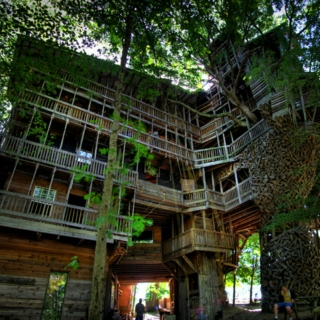 this is our tree house horror show